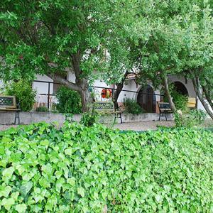 Villa Pla Els Bacus, Villas  Monistrol - big - 34