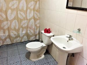 Hostal Marari, Гостевые дома  Анга-Роа - big - 28