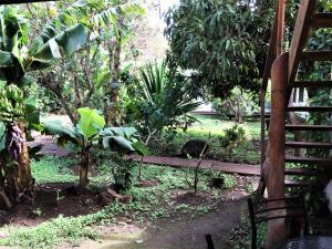 Hostal Marari, Pensionen  Hanga Roa - big - 38