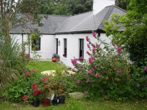 Kilcommon Lodge Holiday Hostel