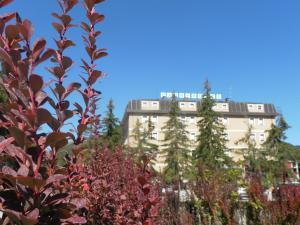 Prenota Park Hotel Ovindoli