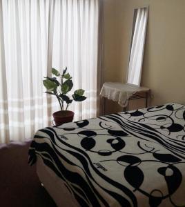 La Bella Maison, Holiday homes  Huanchaco - big - 6