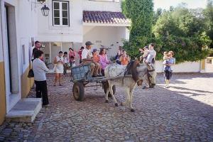 Monte da Amoreira, Ferienwohnungen  Elvas - big - 60