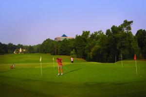 Embassy Suites Charlotte - Concord/Golf Resort & Spa, Hotel  Concord - big - 52