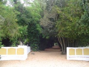 Monte da Amoreira, Ferienwohnungen  Elvas - big - 42