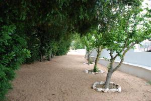 Monte da Amoreira, Ferienwohnungen  Elvas - big - 47