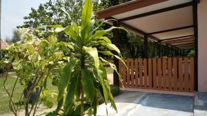 Koh Ngai Kaimuk Thong Resort, Resorts  Ko Ngai - big - 14