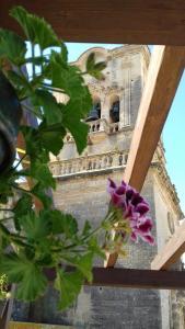Casa Mirador San Pedro