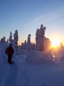 Holiday Resort Seita, Üdülőtelepek  Äkäslompolo - big - 10