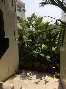 Red Cherry Service Apartment, Ferienwohnungen  Neu-Delhi - big - 3