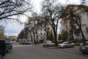 Hrushevsky Apartment Near The Theater, Apartmanok  Ternopil - big - 3
