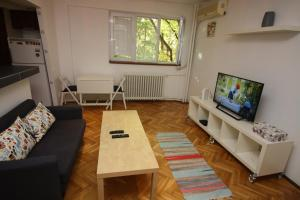 Metropolis Business Apartment, Appartamenti  Floreasca - big - 1