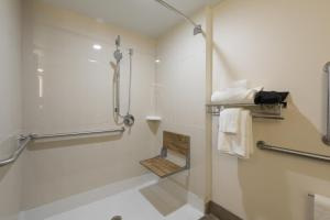 Best Western Premier Milwaukee-Brookfield Hotel & Suites, Отели  Brookfield - big - 10