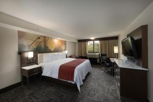 Best Western Premier Milwaukee-Brookfield Hotel & Suites, Отели  Brookfield - big - 8