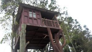 Joys Hotels & Resorts, Munnar