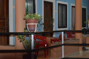 Cactus Guesthouse, Guest houses  Arambol - big - 76