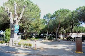 Camping Sant'Albinia, Kempingek  San Vincenzo - big - 1