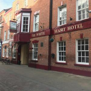 The White Hart Hotel