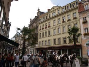 Apartment U Gejziru, Appartamenti  Karlovy Vary - big - 14