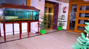Hotel Susee Park, Hotels  Tiruchchirāppalli - big - 55