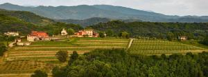 Agriturismo l'Uva e le Stelle, Farm stays  Faedis - big - 1