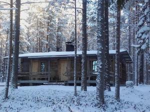 Ollilan Lomamajat, Holiday homes  Kuusamo - big - 46