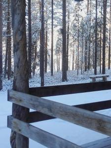 Ollilan Lomamajat, Holiday homes  Kuusamo - big - 45