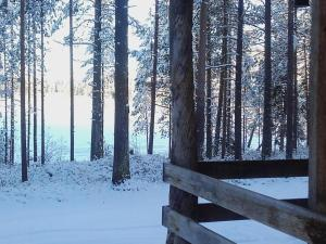 Ollilan Lomamajat, Holiday homes  Kuusamo - big - 43