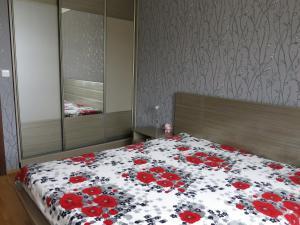 Apartment Violet, Appartamenti  Karlovy Vary - big - 3