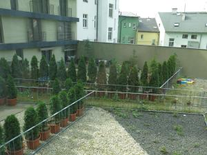Apartment Violet, Appartamenti  Karlovy Vary - big - 2
