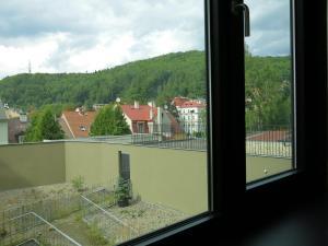 Apartment Violet, Appartamenti  Karlovy Vary - big - 11