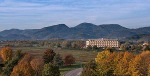 Hotel Leonardo Da Vinci Terme & Golf, Отели  Абано-Терме - big - 13