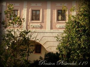 Pension Plešivecká 119, Affittacamere  Cesky Krumlov - big - 39
