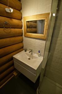 Canadian Log House, Villas  Bakuriani - big - 14