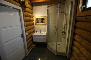 Canadian Log House, Villas  Bakuriani - big - 30