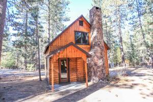 1706 - Robin Retreat Cottage, Dovolenkové domy  Big Bear Lake - big - 1