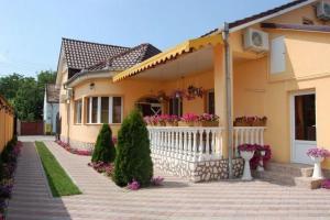 Pensiunea Radena, Guest houses  Arad - big - 29