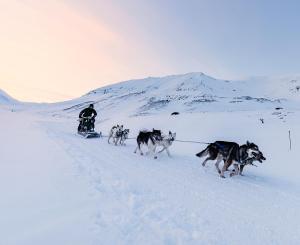 Radisson Blu Polar Hotel, Spitsbergen, Hotely  Longyearbyen - big - 33