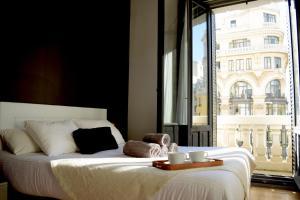 Madrid Suites Gran Via, Apartments  Madrid - big - 1