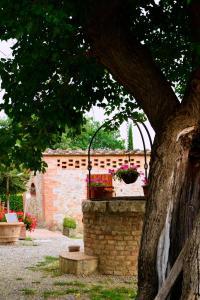 Casa Di Campagna In Toscana, Vidiecke domy  Sovicille - big - 159