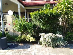 Palm Beach Villa, Nyaralók  Kampong Laut - big - 10