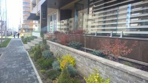 Sweet Garden Residence, Apartmanok  Brassó - big - 43