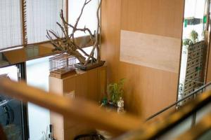 Share house in Yayoicho R1, Apartments  Tokyo - big - 4