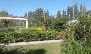 Mariaflorales, Lodge  San Rafael - big - 1