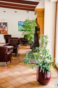 Regina, Hotels  Druskininkai - big - 31