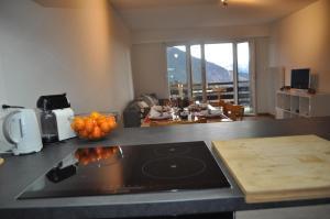 Apartment Leysin - Swiss Alps - Leysin