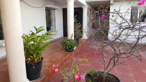 Suites Rosas, Ferienwohnungen  Cancún - big - 29