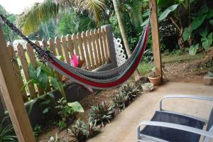 Roatan Backpackers' Hostel, Hostelek  Sandy Bay - big - 63