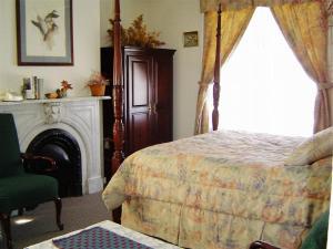 The Historic Mansion, Affittacamere  New Haven - big - 5