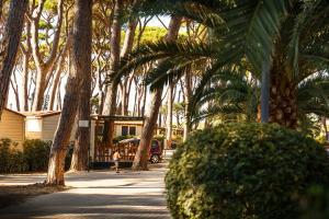 Park Albatros, Holiday parks  San Vincenzo - big - 77